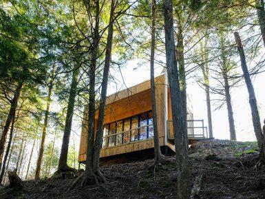 Tu peux louer ces incroyables lofts en forêt